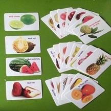 Bộ thẻ học thông minh cho trẻ gồm 16 chủ đề tổng 416 thẻ